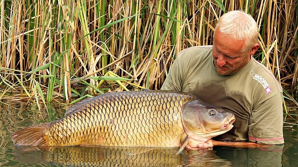 Horgász magazin