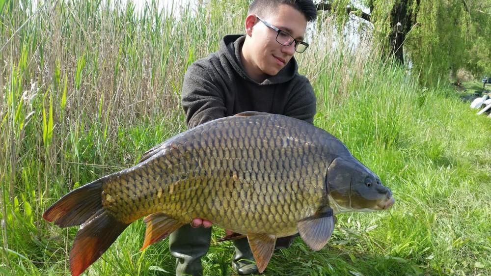 Bencze Lajos fiatal horgásztársunk szép fogásai
