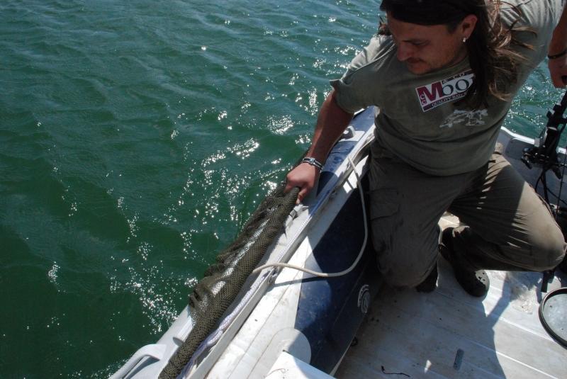 Ha csónakban fárasztunk, a merítő fejét stabilan tekerjük fel, és a csónak oldalához szorítva a halat fejjel előre hozzuk ki a partra.