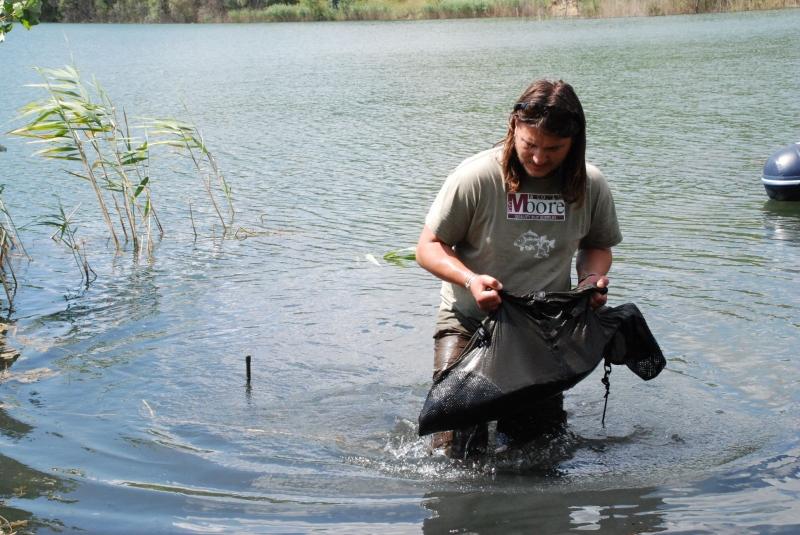 A halat mindig vízszintesen tartsuk a haltartóban, mert ha hátracsúszik, megtörhet a farokúszója